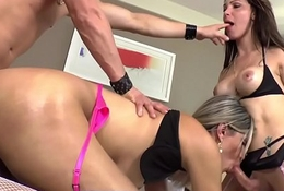 Busty shemales assfucked and cocksucking